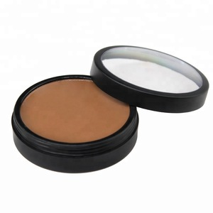 Long Lasting Wholesale Cream Private Label full coverage concealer