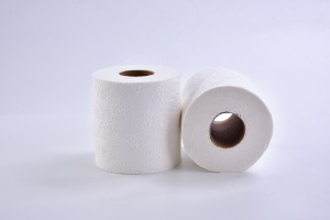 Custom Printed embossing Bath Roll dissolvable Toilet Paper in Bales