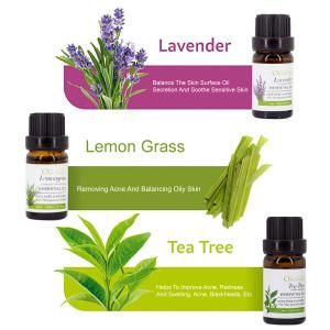 Ready to ship organic 10ml bottles  eucalyptus/peppermint/lemongrass/tea tree/lavender/orange essential oil gift set for sale