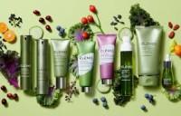 L'Occitane cosmetics for sale