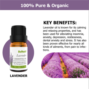Aromatherapy Beauty Spa Aroma Diffuse Essential Oil Kit Lavender Tea Tree Pure Essential Oil Set