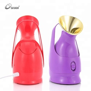 Home use portable skin care mister professional electric nano ionic hot facial steamer