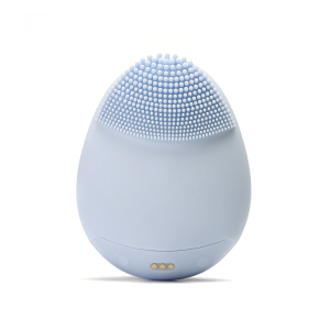 New product ideas 2021 Private Label Brush Facial Brush Device Portable Facial Cleansing Brush