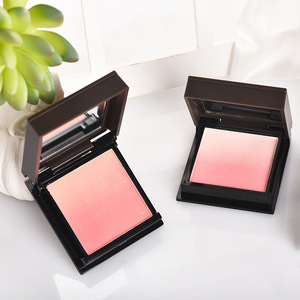 OEM professional wholesale waterproof makeup single color blusher palette container with blush