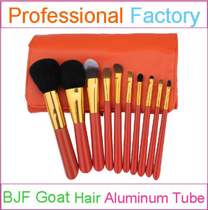 10pcs professional makeup set with perfect makeup brushes