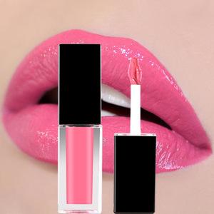 LT08 Top quality wholesale new brillant private label lip gloss