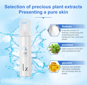 Private Label LZ Beauty Whitening Deep Cleansing Foam Face Wash Anti Acne Control Oil Bubble Facial Cleanser
