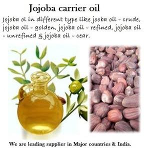 Jojoba Carrier Oil Wholesale Price | BeauteTrade