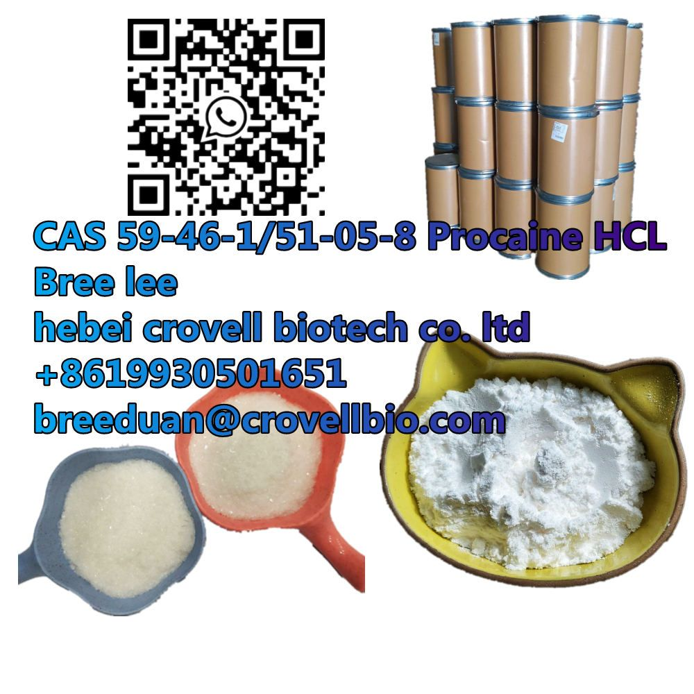 We can supply APIs CAS 59-46-1/51-05-8 Procaine base HCL with best Price and high quality 0086 19930501651