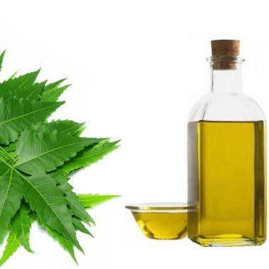 focus neem oil