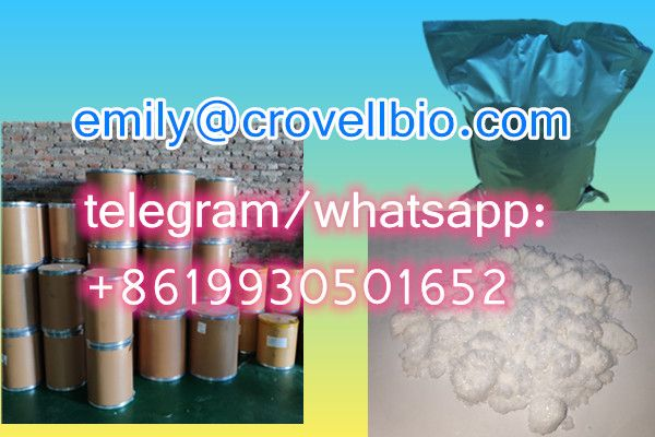 China manufacturer CAS 613-93-4 N-Methylbenzamide with wholesale price (whatsapp:+8619930501652)