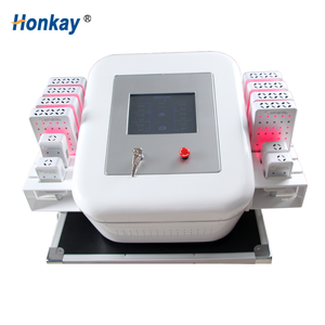 Professional Dual Wave Lipo Laser Body Slimming/Weight Loss Machine
