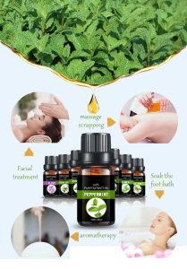 Aromatic essential oil peppermint oil cosmetic base oil