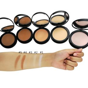 Wholesale  multicolor optional beauty pressed powder makeup foundation private label