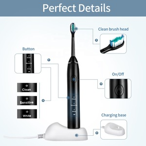 Oral hygiene personalized electric toothbrush USB charging Rechargeable OEM Adult Smart IPX7 sonic Automatic Dental toothbrush