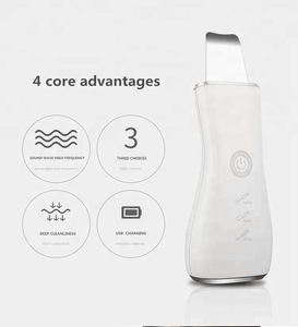 Wholesale Hand Hold Ultrasonic Face Cleaner  Microcurrent Ultrasonic Skin Scrubber Rechargeable beauty care tools and equipment
