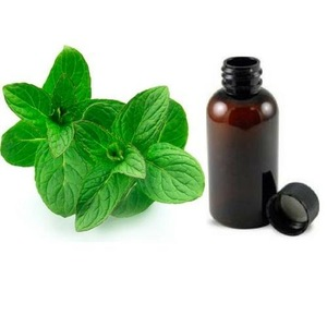 100% pure & natural mentha arvensis peppermint mint mentha essential oil