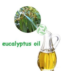 ZX wholesale eucalyptus oil price,eucalyptus essential oil bulk