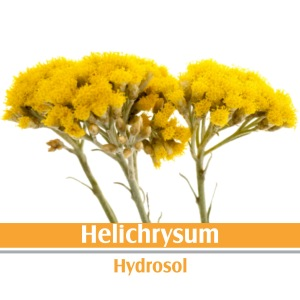 HELICHRYSUM HYDROSOL. 100% PURE AND NATURAL